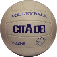 "Beach Volleyball 8"" Waterproof. LOWEST $2.49"